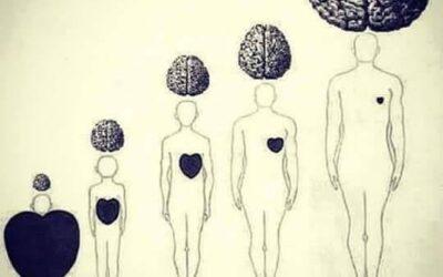 A szívedet nem tudod becsapni